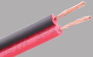 Parellel Speaker Wire